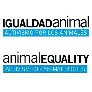 Profile picture for IgualdadAnimal | AnimalEquality