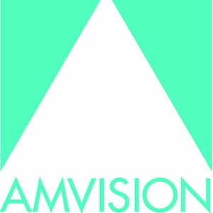 Profile picture for Amvision