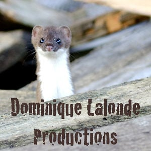 Profile picture for Dominique Lalonde Productions