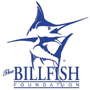 Profile picture for The Billfish Foundation