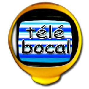 Profile picture for Télé Bocal