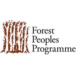 Profile picture for Forest Peoples Programme
