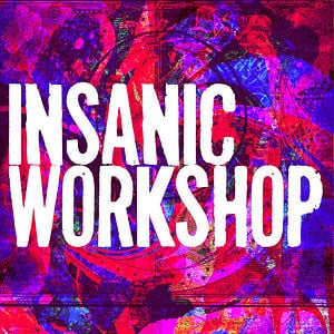 Profile picture for INSANIC WORKSHOP