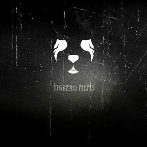 Profile picture for Tigrero films