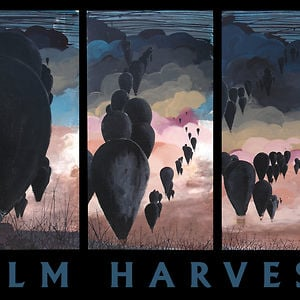 Profile picture for Film Harvest