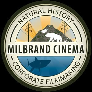 Profile picture for Lance Milbrand