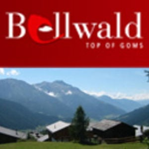 Profile picture for Bellwald Tourismus