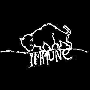 Profile picture for Immune Recordings
