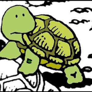 Profile picture for turtlepod