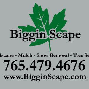 Profile picture for BigginScape