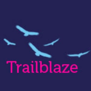 Profile picture for The Trailblazery