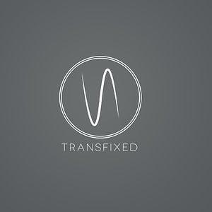 Profile picture for Transfixed
