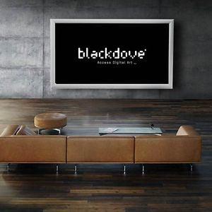 Profile picture for Blackdove