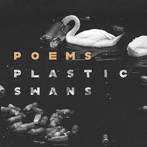 Profile picture for Plastic Swans