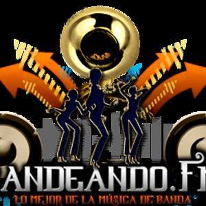 Profile picture for Bandeando.FM
