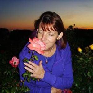 Profile picture for Sara Turner