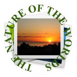 Profile picture for THE NATURE OF THE WORLDS