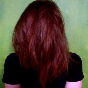 Profile picture for Kim snauwaert
