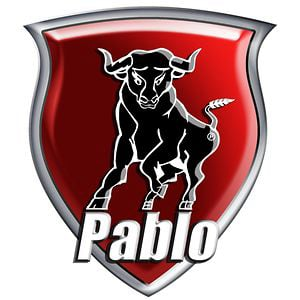 Profile picture for pablomedia