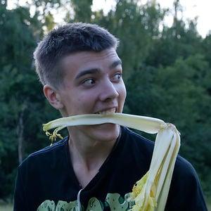 Profile picture for Sergey Serganov