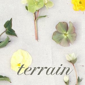 Profile picture for Terrain