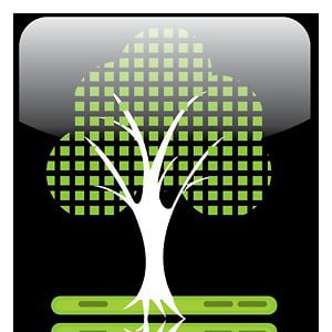 Profile picture for Digital Learning Tree