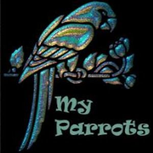 Profile picture for MyParrots.gr