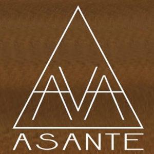 Profile picture for AVA ASANTE