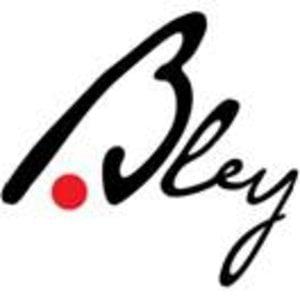 Profile picture for Aija Bley