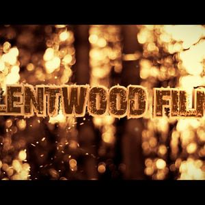 Profile picture for Silentwood Films