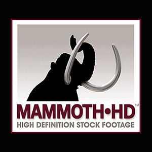 Profile picture for MammothHD