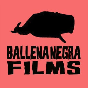 Profile picture for Ballena Negra Films