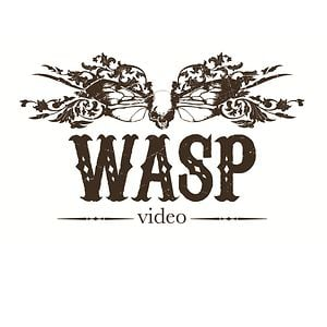 Profile picture for Wasp Video
