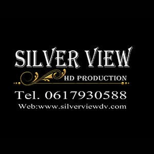 Profile picture for silverview