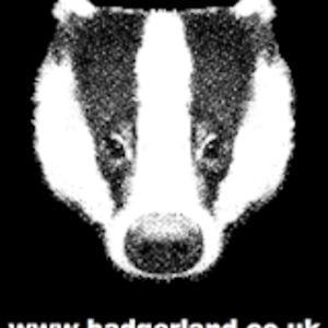 Profile picture for badgerlandcouk