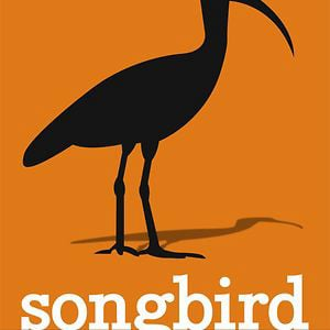 Profile picture for songbird media group
