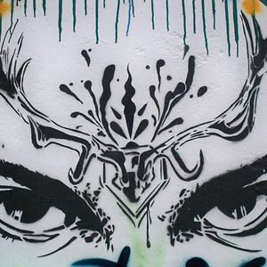 Profile picture for Antrax Street Art