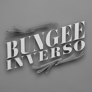 Profile picture for BUNGEE INVERSO