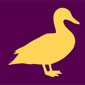 Profile picture for Yellow Duck Marketing