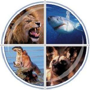 Profile picture for Aquavision TV Productions
