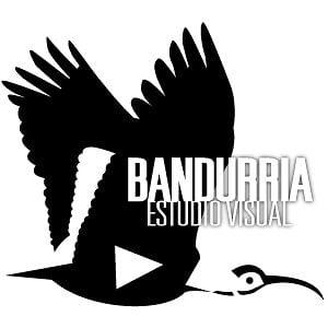 Profile picture for Bandurria Estudio Visual