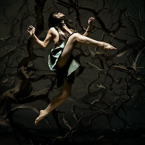 Profile picture for Liss Fain Dance