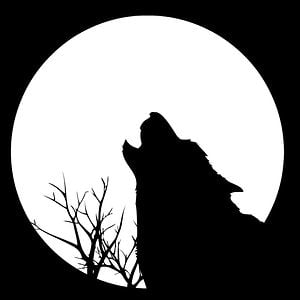 Profile picture for Wolf Pictures