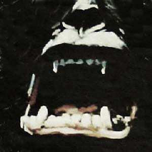 Profile picture for KINGKONGFILMS