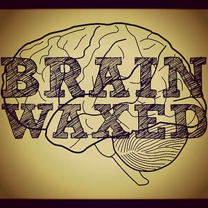 Profile picture for brainwaxed