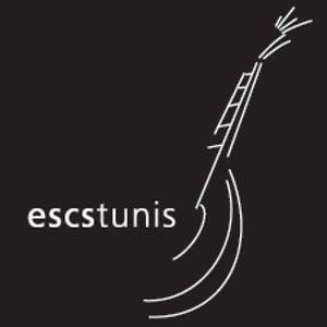 Profile picture for escstunis