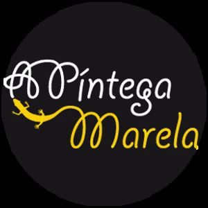 Profile picture for A Píntega Marela