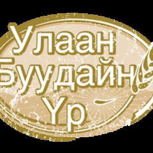 Profile picture for Ulaanbuudain Vr
