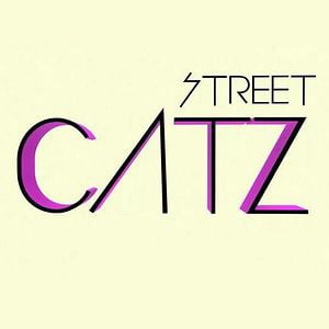 Profile picture for streetcatztv