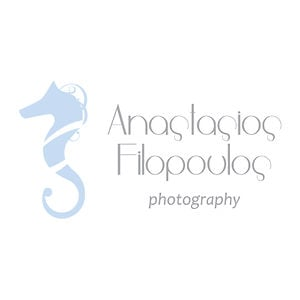 Profile picture for anastasios filopoulos